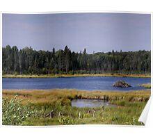 Beaver Dam - Wellman Lake Poster