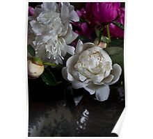 Peonies in a vase Poster