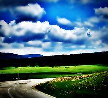 on road by AYYA