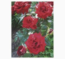 Moldovan Red Roses Kids Clothes