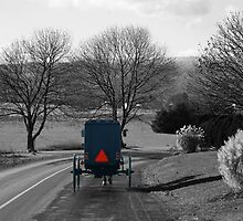 Amish Buggy by Cassy Greenawalt