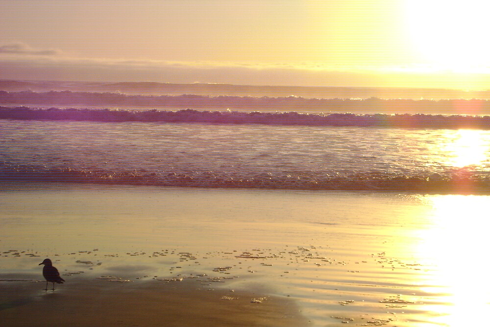 Grover Beach, California by angelsofia
