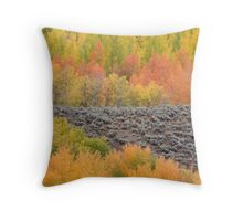 Bands of Fall Color Throw Pillow