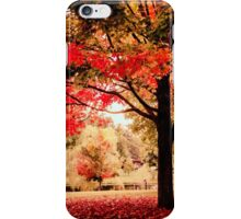 Red Maple in Larz Anderson park. iPhone Case/Skin