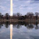 The Washington Monument by Cora Wandel