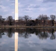The Washington Monument by Cora Wandel