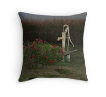 Old fashioned water pump.... Throw Pillow