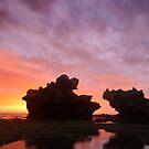 Ocean Giants by RichardIsik