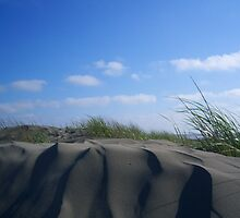 Sculpted- Ocean Shores, WA by Jess Mo