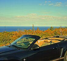 ...atop Brockway Mountain Drive... by Lynne Prestebak