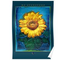 Ho'oponopono Sunflower Cleansing poster Poster