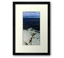 Best Bit of Bonaire Framed Print