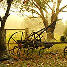 The Old Plough by Dave Storey