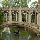Taking a Punt, Cambridge, England by SusanAdey