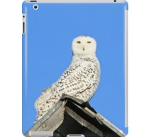 Clear day for a descent from heaven iPad Case/Skin