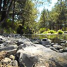 Nymbodia River northern NSW by Dave Storey