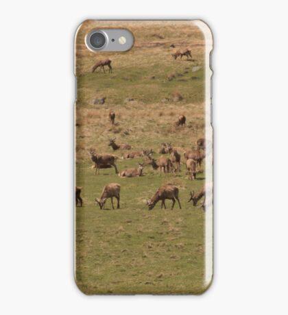 Red Deer Herd at Loch Muick iPhone Case/Skin