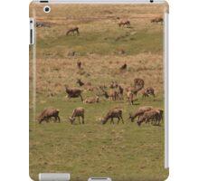 Red Deer Herd at Loch Muick iPad Case/Skin