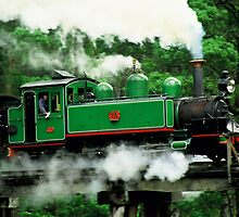 Puffing Billy Full Steam Ahead by Ronald Rockman