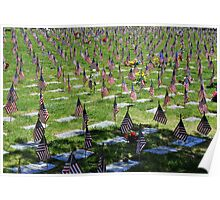 Veterans Memorial Cemetery Poster