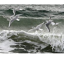 Just Above Water Photographic Print