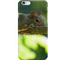 Being Invisible iPhone Case/Skin