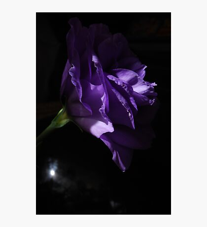 My lithianthus mystery Photographic Print