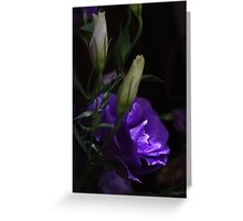 Lithianthus mystery Greeting Card
