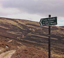 Path from Loch Muick to Glen Clova. by Darrenadie