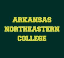 ARKANSAS NORTHEASTERN COLLEGE by philbeck