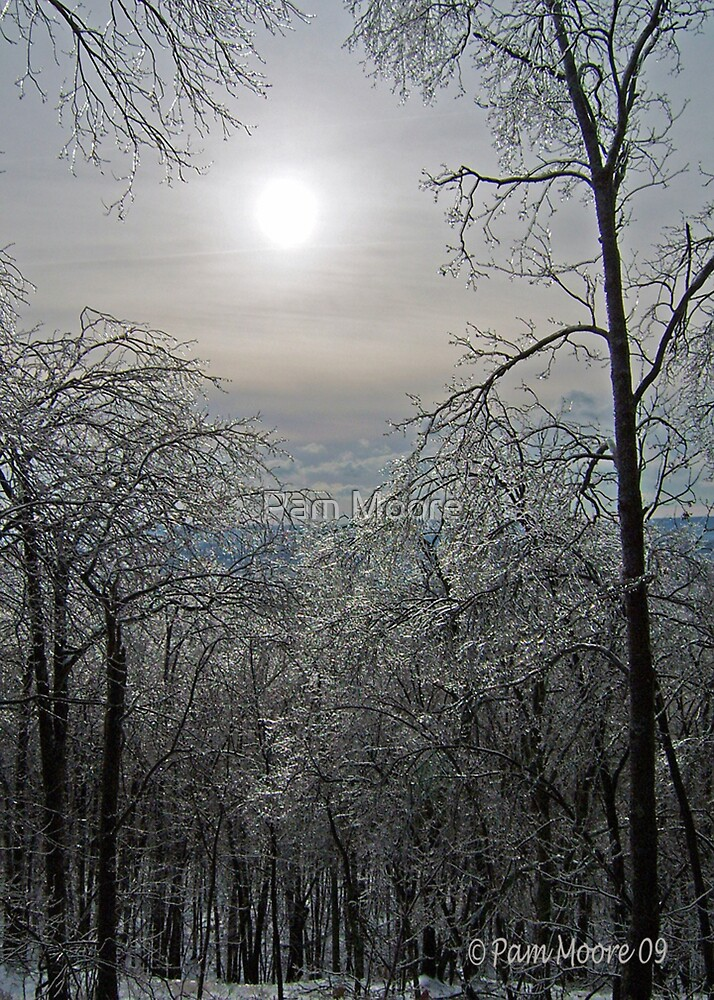 Winter Ice Storm  by Pam Moore