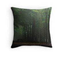 There is still some light Throw Pillow