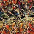 Net webbed wall by UltraGnosis