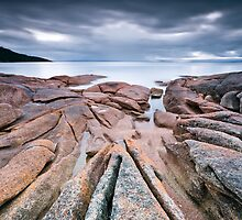 Honeymoon Bay, Freycinet National Park, Tasmania, Australia. by Lee Duguid
