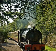 Lakeside & Haverthwaite Railway by Steve  Liptrot