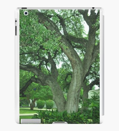 trees iPad Case/Skin
