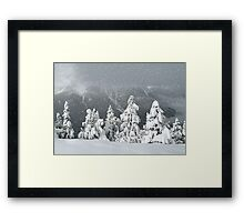 Banff snowy christmas Framed Print