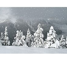 Banff snowy christmas Photographic Print