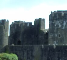 Caerphilly Castle - Wales 2009 by anaisnais