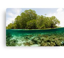 Raja Ampat Mangroves Canvas Print