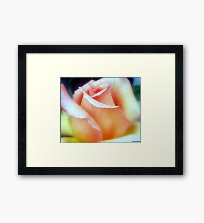 Softly...As I Leave You........... Framed Print