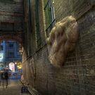 A Living City by Rod Kashubin