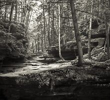 Hocking Hills by Ron Neiger