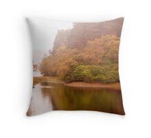 Autumn misty colours. Throw Pillow