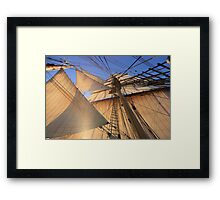 Morning Sails Framed Print