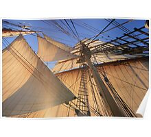 Morning Sails Poster