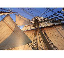 Morning Sails Photographic Print