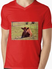 Brown Moo Moo Mens V-Neck T-Shirt