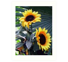 Sunflowers with a twist Art Print