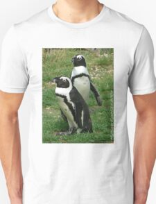 #586  Two Penguins T-Shirt